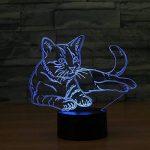 Ahat Chat 3D Visualisation Bulbling Chambre Lumière / Illusion Optique Lampe de Bureau / Lumineux Transparent Acrylique LED Lampe de Table pour Chambre à coucher Chambre à coucher Décor / Holiday cadeau d'anniversaire, Touch-Control USB-Charging avec base image 1 produit