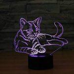 Ahat Chat 3D Visualisation Bulbling Chambre Lumière / Illusion Optique Lampe de Bureau / Lumineux Transparent Acrylique LED Lampe de Table pour Chambre à coucher Chambre à coucher Décor / Holiday cadeau d'anniversaire, Touch-Control USB-Charging avec base image 4 produit
