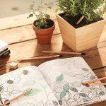 artiste dessin crayon papier TOP 9 image 4 produit