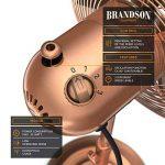 Brandson - Ventilateur de pied avec design retro en cuivre   3 différents niveaux de vitesse   Fonction d'oscillation d'environ 80 °   Inclinable 30 °   Ventilateur de sol   support réglable en hauteur   Flux d'air élevé   3 différents niveaux de vitesse image 2 produit