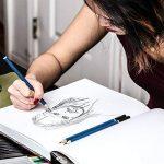 Colore Premium Art Lot - 50 crayons Assortis Lot de crayons pour pages de coloriage et livres - colorées, aquarelle, dessin, Charbon de bois et crayons de couleur métallique pour les étudiants, les en de la marque Colore image 6 produit