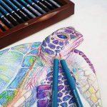 MONT MARTE Crayons de Couleur Aquarellables Premium Deluxe - 72 pièces de Crayons Aquarellables dans une boîte en bois - Idéal pour les dessins colorés - Parfait pour les débutants, les professionnels de la marque Mont Marte image 6 produit